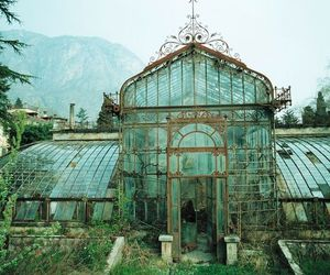 greenhouse, glass, and green image