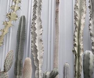 cactus, plants, and bambi image