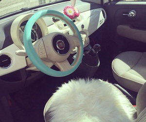 fiat500 and car image