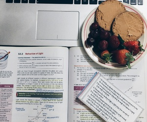 book, food, and homework image
