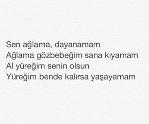 Turkish, sezen aksu, and turkce image