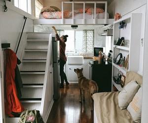 home, room, and dog image