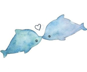 dolphin, love, and cute image