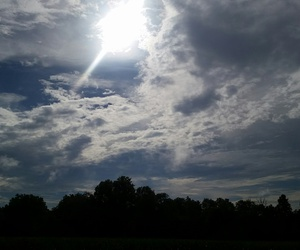 clouds, trees, and shadow image
