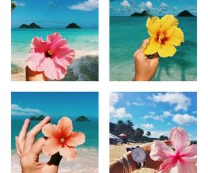 beach, obelisco, and photography image