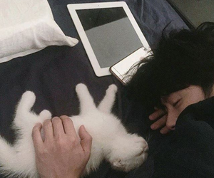 cat, boy, and ulzzang image