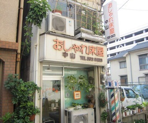 japan, aesthetic, and plants image