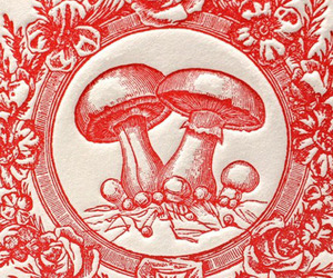 circle, mushrooms, and red image