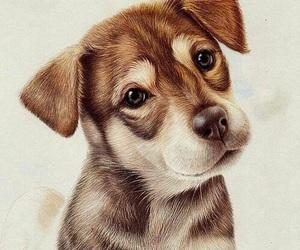dog, art, and drawing image