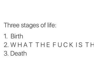 birth, death, and words image
