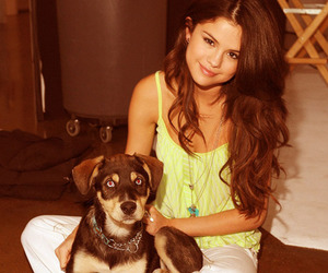 selena gomez, dog, and baylor image