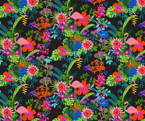 background, flamingo, and floral image