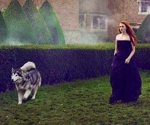 game of thrones, sophie turner, and stark image
