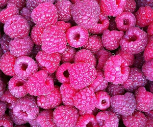 purple, fruit, and raspberry image
