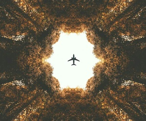 nature, ✈, and ❤ image