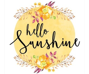 hello and sunshine image