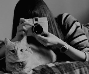 camera, cat, and girl image