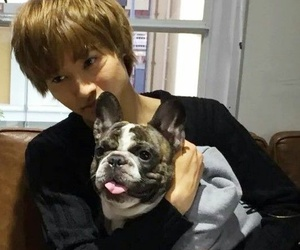 actor, japanese, and kento image