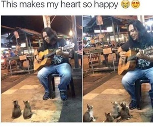 cats, beautiful, and guitar image