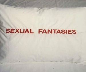 fantasies, pillow, and sex image