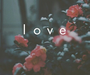 love, flowers, and wallpaper image