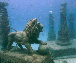 lion, cleopatra, and underwater image