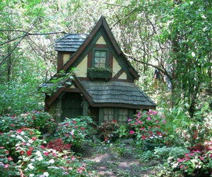 forest, nature, and cottage image