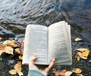 book, fall, and read image