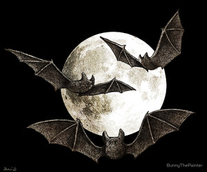 bats, Dracula, and edward gorey image
