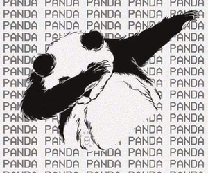 panda, wallpaper, and dab image