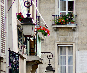 paris, flowers, and street image