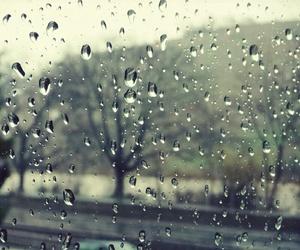 photography, rain, and drops image