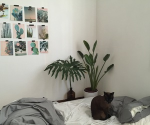 bed, bedroom, and cactus image