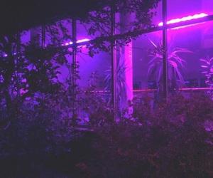 purple, aesthetic, and plants image