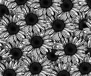 flowers, black and white, and background image