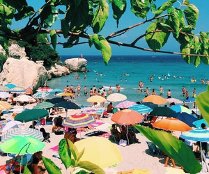 tropical, beach, and summer image