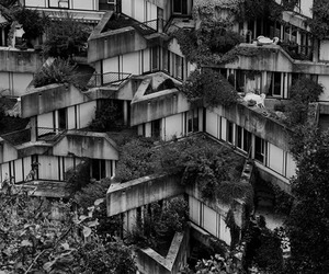 plants, balcony, and brutalist image