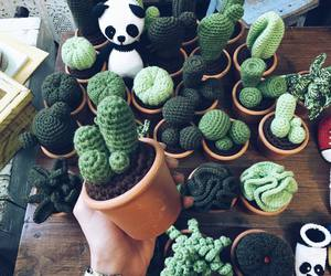 cacti, cactus, and knitted image