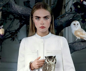 model, cara delevingne, and owl image