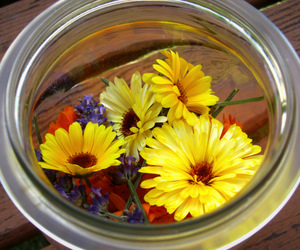bouquet, flower, and jar image