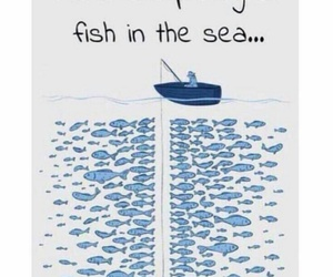 funny, fish, and lol image
