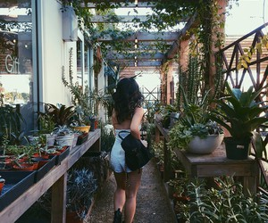 plants, greenhouse, and tumblr image
