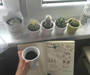 bands, book, and cactus image