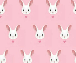 pink, background, and bunny image