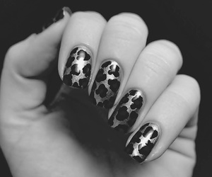nails, animal print, and fingers image