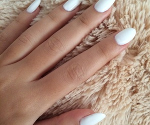 almond, long, and long nails image