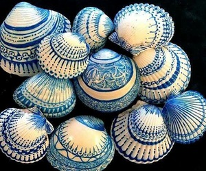 shell, blue, and art image