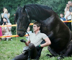 horse, Lithuania, and men image