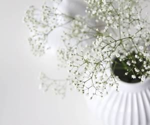 danish, design, and flowers image