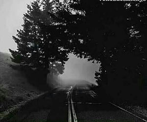 road, fog, and travel image